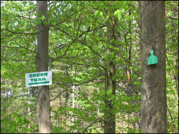 green trail signs